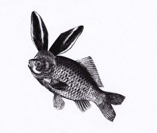 La carpe et le lapin © Alain Michard - Illustration d'Alice Gautier.