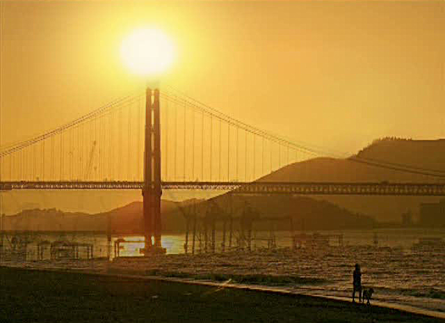 Alexandre Estrela, Light Bridges, 2007 Collection Frac Bretagne © Alexandre Estrela