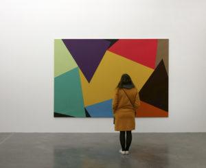 Vue de l'exposition Collection. La composante Peintures. Bruno Rousselot, E. n°117_2014, 2014. Collection Frac Bretagne Crédit photo : Frac Bretagne