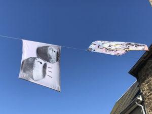 Vue de l'exposition Air de fête à Saint-Briac-sur-Mer, Clémence Estève, Caille Girard & Paul Brunet, été 2019 - Crédit photo : Frac Bretagne